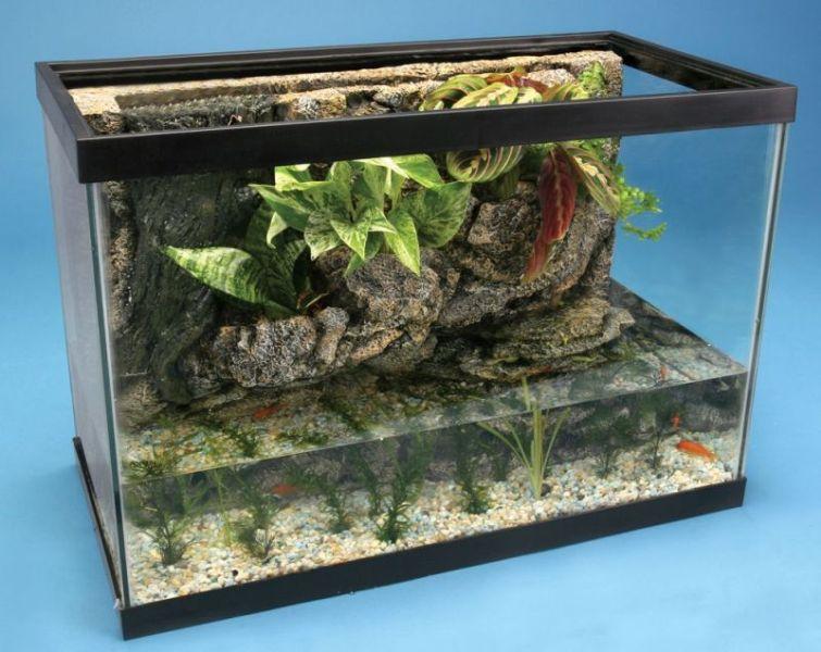 River Ecosystem Aquarium