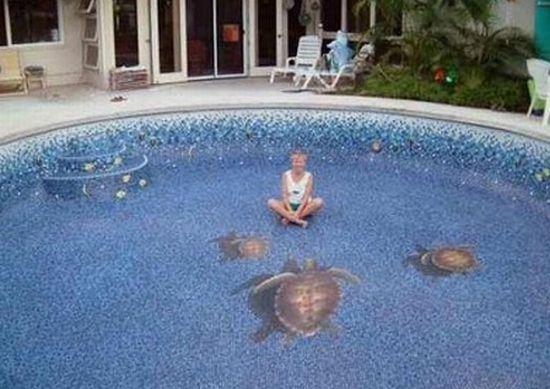 3d swimming pool1