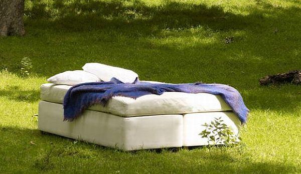 Abaca's organic bed