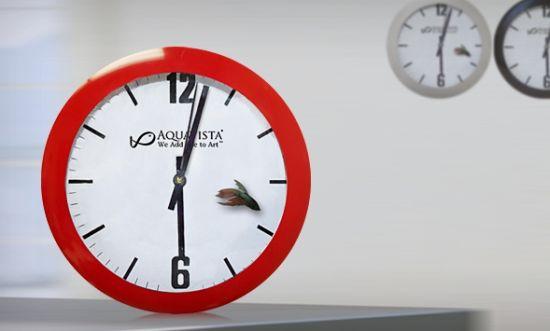 aqua clock aquavista