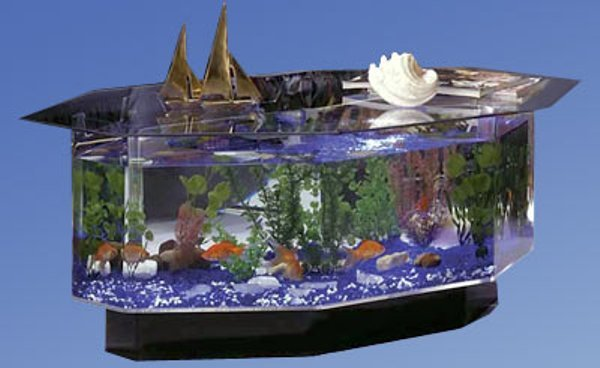 Most unusual and creative fish tanks - Hometone