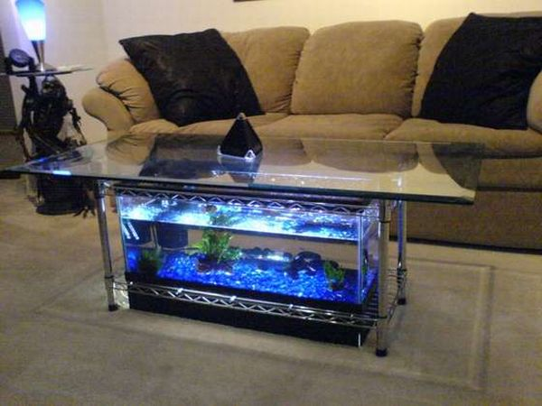 How to build your own aquarium coffee table