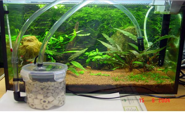 How to make a homemade aquarium filter