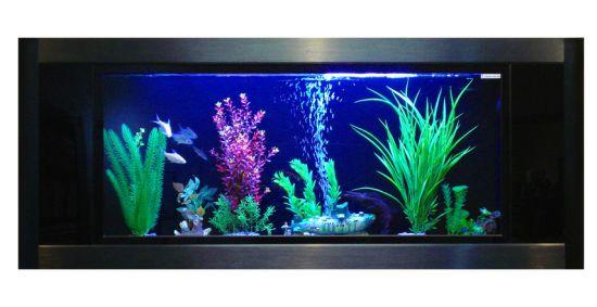 aquavista panoramic wall aquarium2