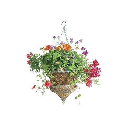 Austram hanging planter