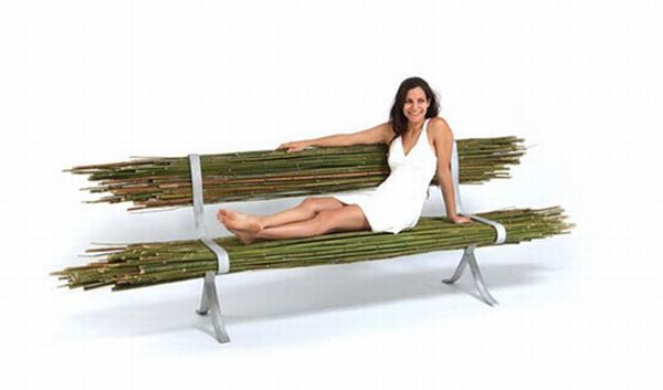 Bare Bamboo Bench
