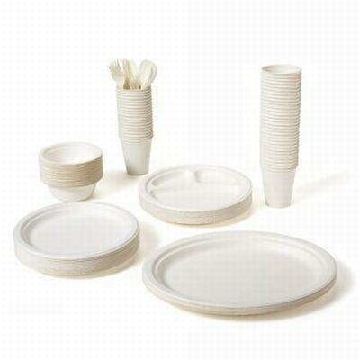 biodegradable dinnerware sets