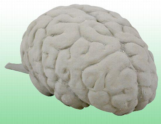 brain fart cuhsion