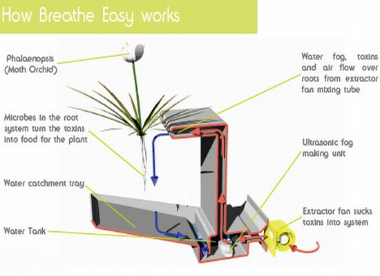 breath easy4 cSTH6 1822