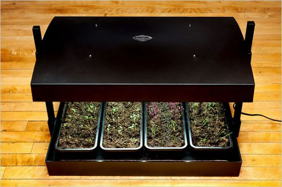 container gardens2