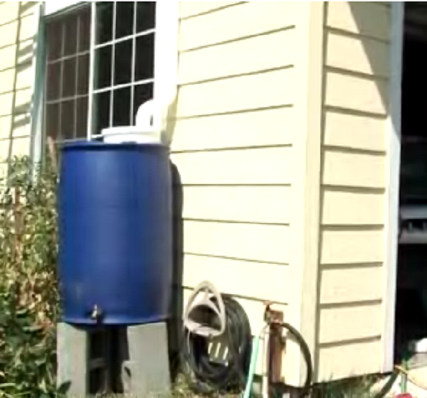 How to build a rainwater collection system home for Home rainwater collection