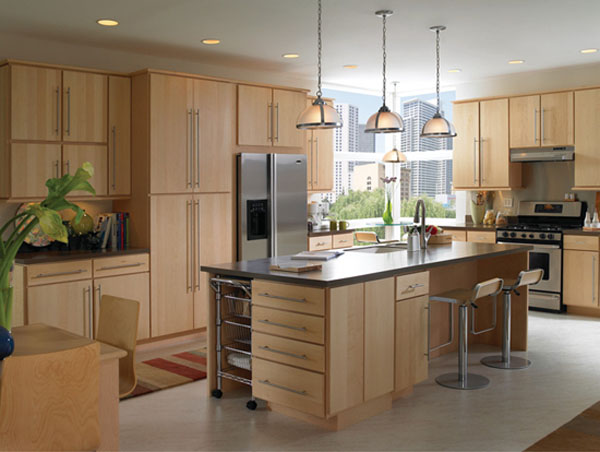 Exclusive kitchen cabinet designs - Hometone