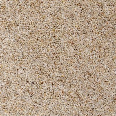 Berber+Carpet