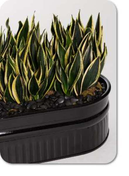Deco steel planter