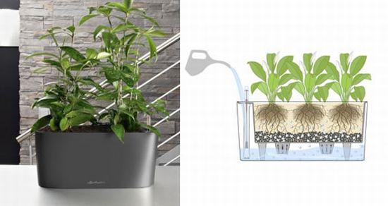 delta planter