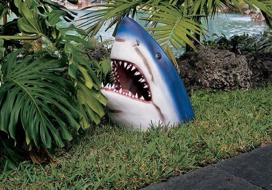 design toscano  shark