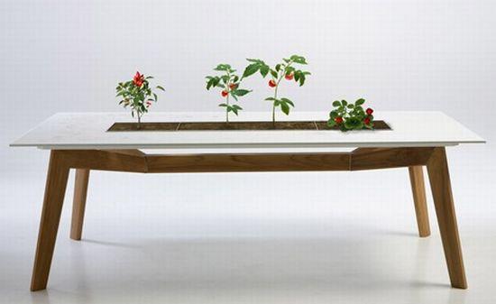 escho table rosis 2 COgR3 1822