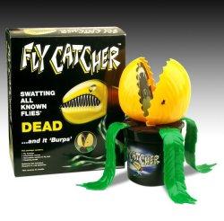 flycatcher2