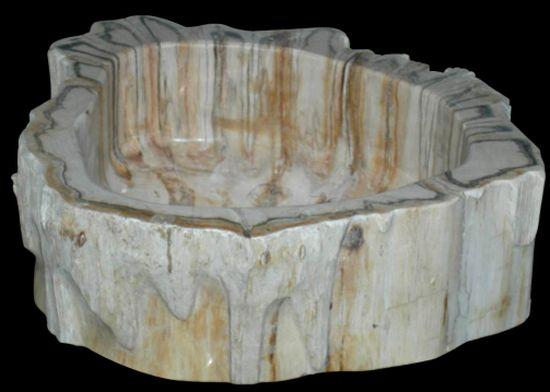 fossil petrified wood sinks1
