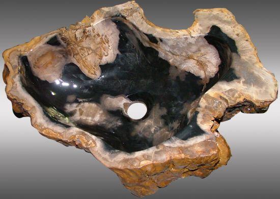 fossil petrified wood sinks