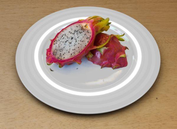 fukushima plate 2