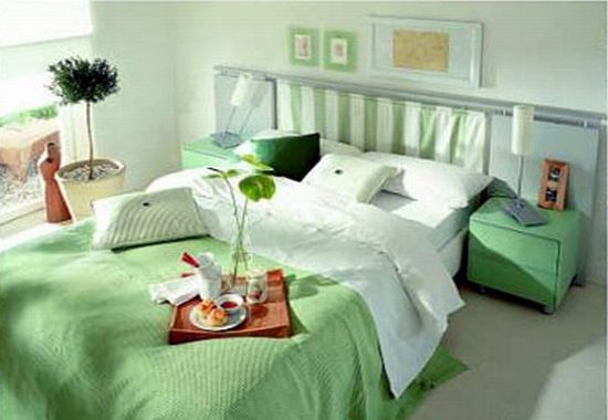 green themed house2