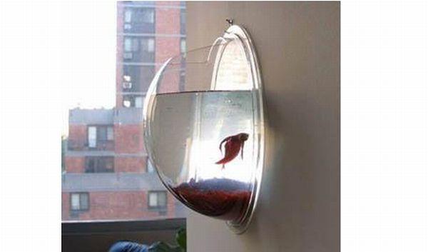 Hanging Fish Pod