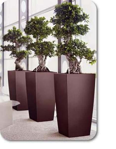 Horizon planters
