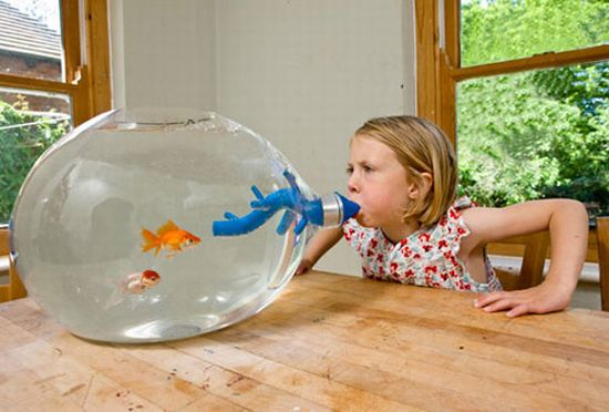 Unusual And Creative Fish Tanks Hometone