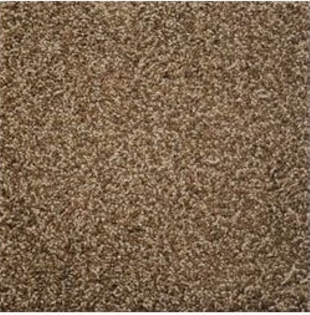 Stainmaster carpet 10 most beautiful hometone for Best wearing carpet for high traffic areas