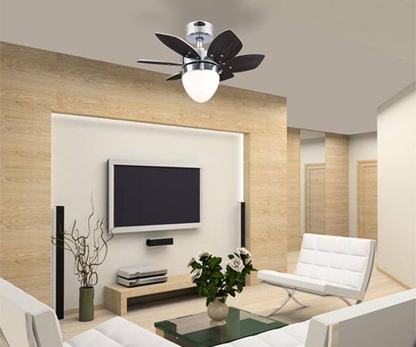 Indoor ceiling fan