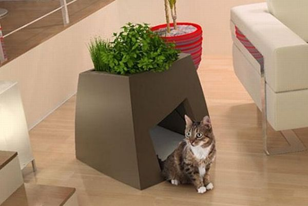 Indoor Green-Roofed Homes for House Pets