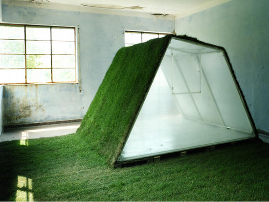 lawn mobile house1