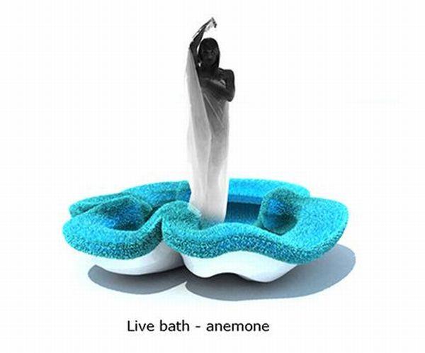 Live bath-anemone by  Irina Samoylova