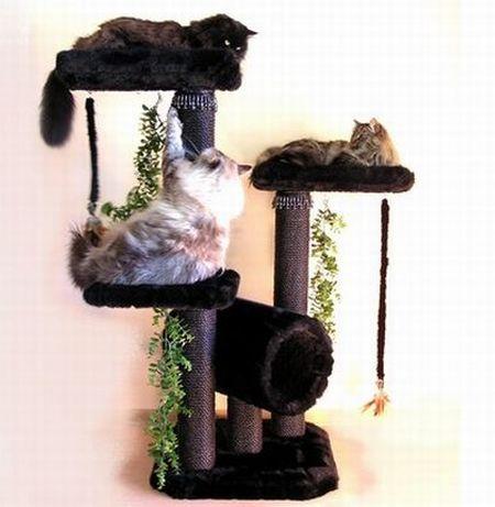 luxury cat condo2
