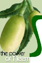 magical neem