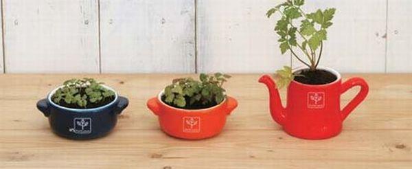 Miniature French Herb Garden