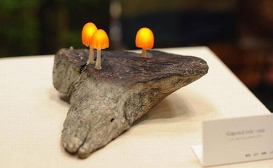 mushroom led4