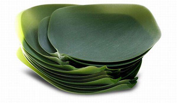 Nature Inspired Dishware