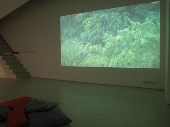 open gallery3