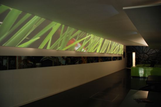 open gallery4