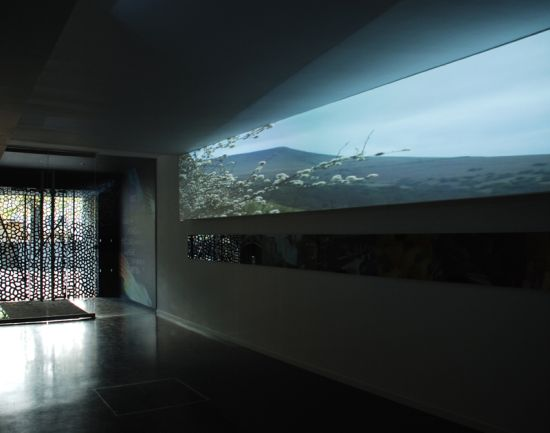 open gallery5