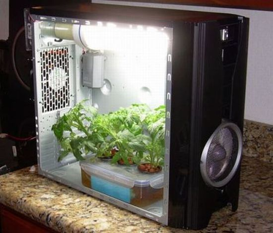 pc grow box2