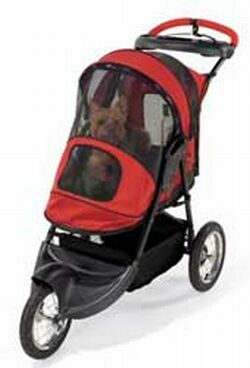 pet stroller 2