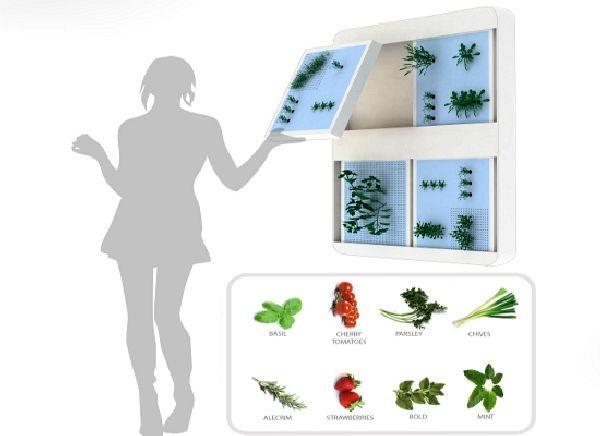 Portable Wall Garden