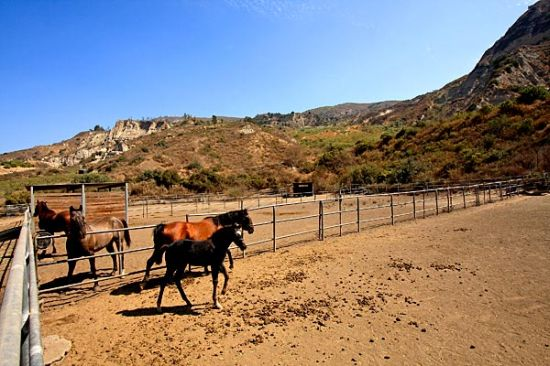 santa paula ranch4
