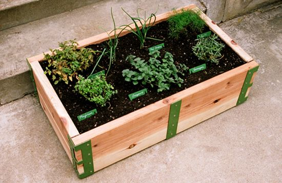 sr patio garden1