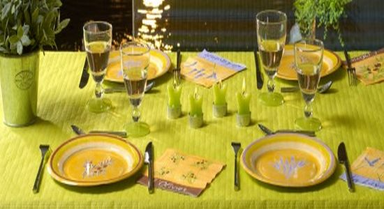 tableware by tifany industries11