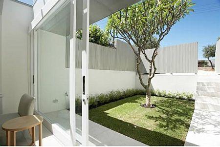 Terrace garden1