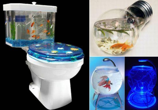Unusual And Creative Fish Tanks Hometone